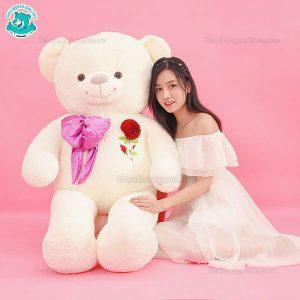 Gấu Bông Teddy Nơ Hoa Hồng Nhung 1m6