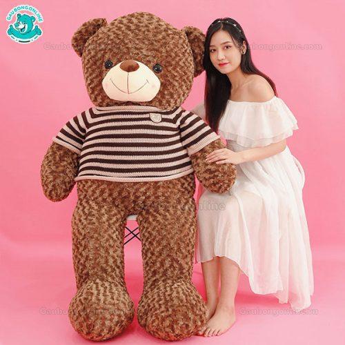 Gấu Bông Teddy Socola